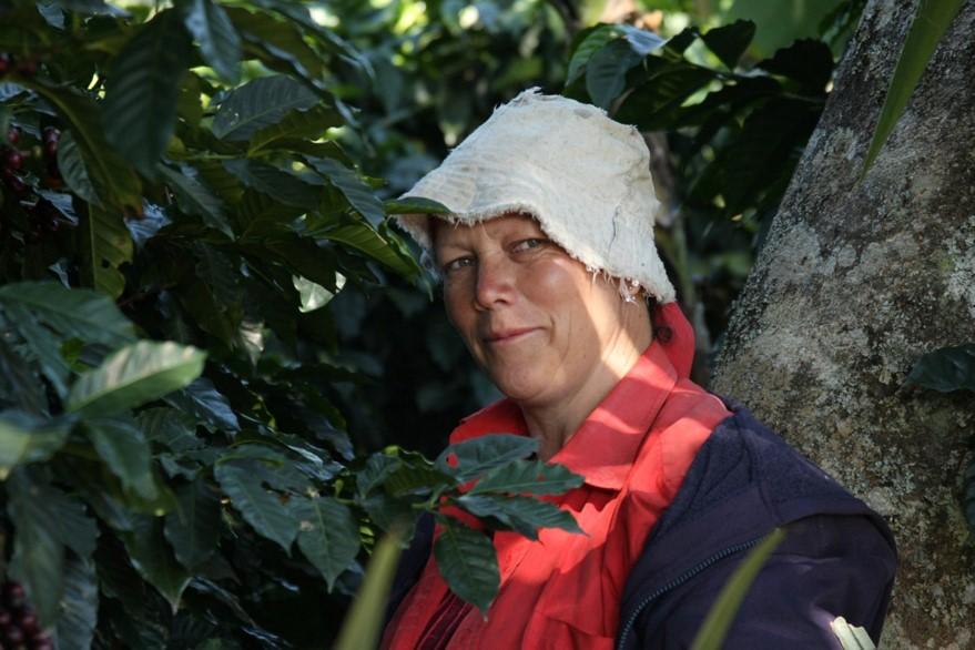 Costa Rica grower